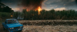 06_Burning_sugar_cane1-1024x427